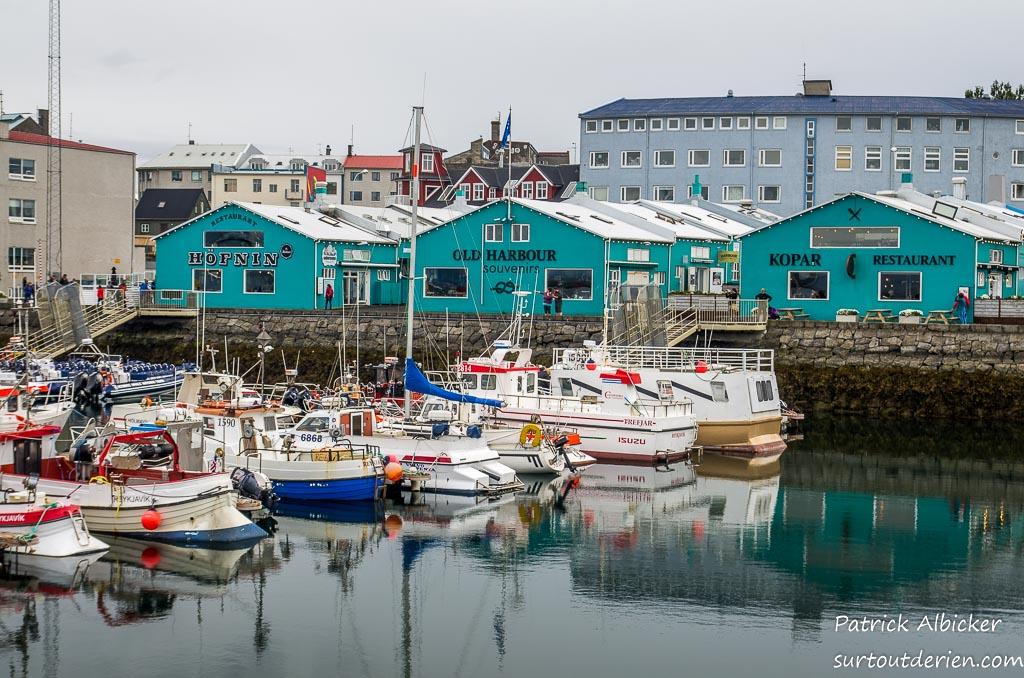Reykjavik-IMGP5923