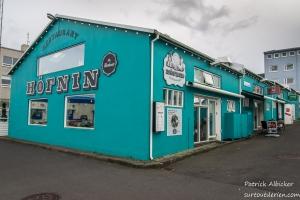 Reykjavik-IMGP5927