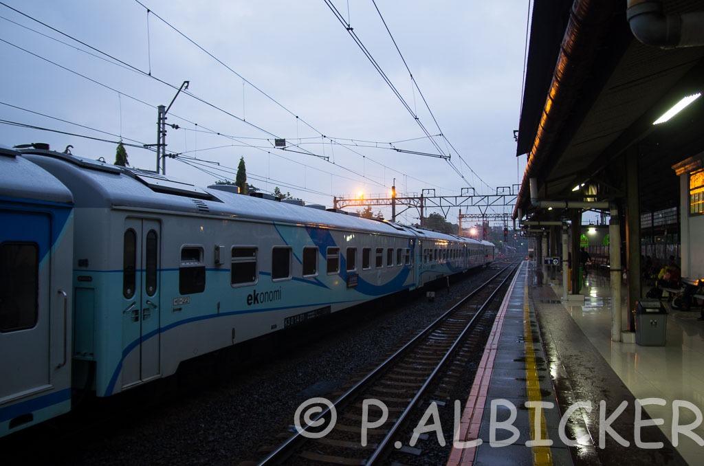 IMGP6054